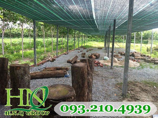 Lưới che nắng cho vườn trồng hoa kiểng