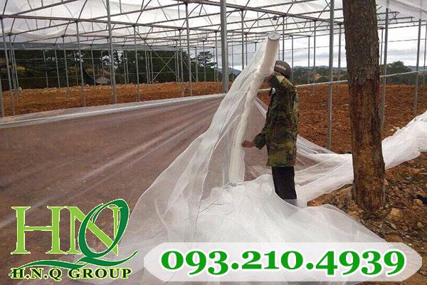 Thi công lưới chống côn trùng cho nhà lưới