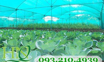 Lưới mùng xanh đan xéo nông nghiệp