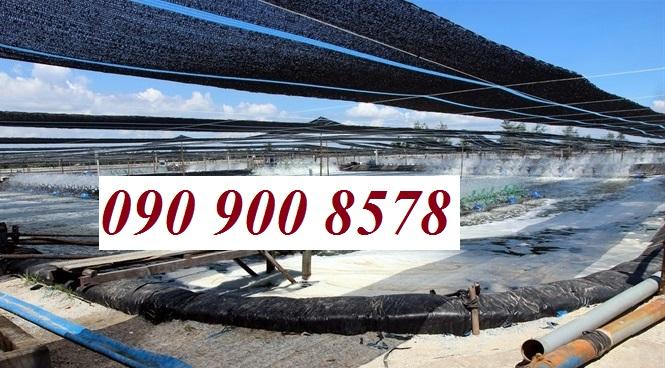Lưới che nắng cho hồ nuôi tôm