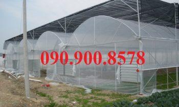 Xúc tiến phát triển nông nghiệp ứng dụng công nghệ cao tại Hà Nội