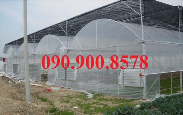 Lưới che nắng cho nhà trồng nấm