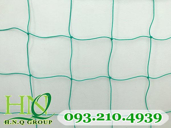 Lưới vây sân bóng 3mm