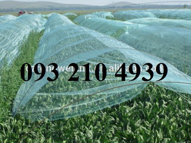 Lưới che rau màu xanh khổ 3mx50m