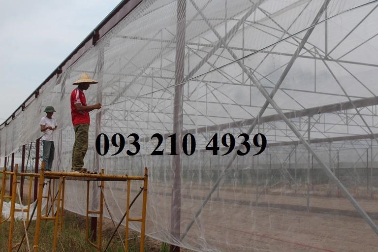 Nhà lưới trồng rau