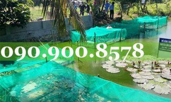 Ứng dụng của lưới ô vuông 4mm trong nôi trồng thủy hải sản