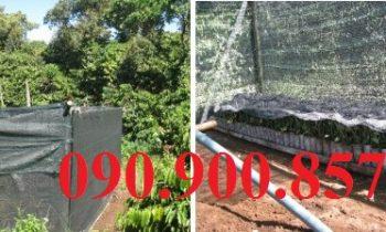 Bán vật tư lưới che nắng, lưới mùng làm nhà lưới trồng rau