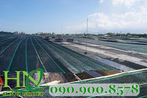 Lưới che nắng nông nghiệp