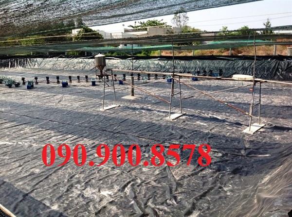 Chuẩn bị hồ nuôi tôm công nghiệp