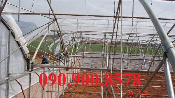 Cách làm nhà lưới trồng rau