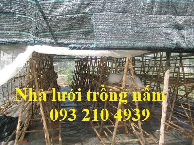 Nhà lưới trồng nấm