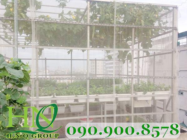Nhà lưới trồng rau nhỏ