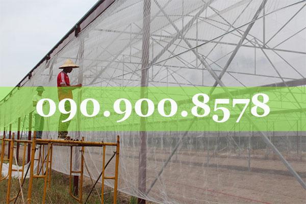 Lưới chắn côn trùng làm nhà lưới