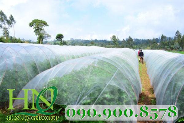 Nông dân sẵn sàng cho công nghệ 4.0