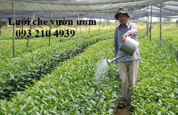 Lưới che cho vườn
