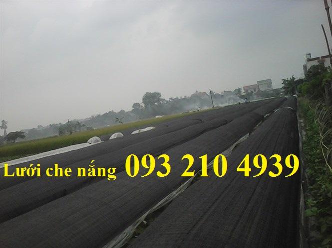Lưới che nắng trong ngành nông nghiệp, xây dựng, dân dụng