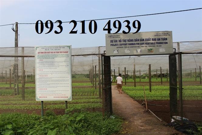 Nhà lưới trồng rau ở Hoài Đức