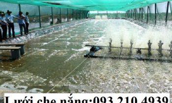 Nuôi thủy sản trong nhà lưới chống biến đổi khí hậu ở Trà Vinh