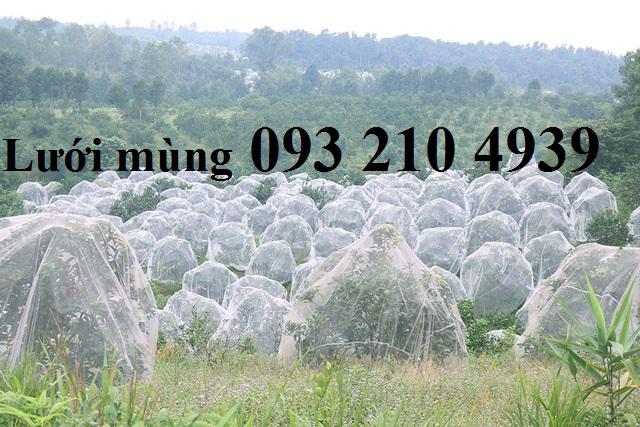 Lưới chống côn trùng trùm cây