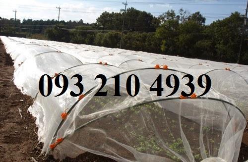 Lưới che mưa cho rau