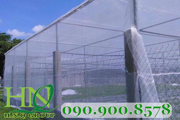 Lưới chắn côn trùng trồng rau sạch- khỏe người lãi cao