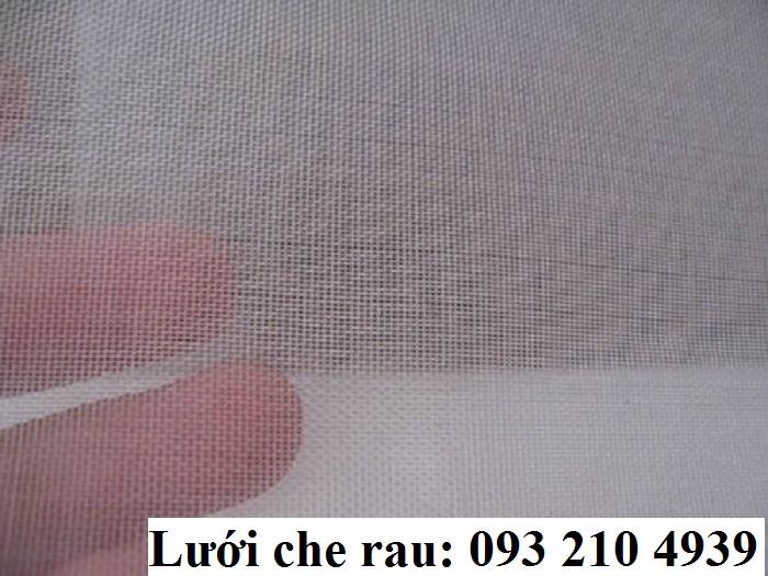 Các loại lưới chắn côn trùng phổ biến trên thị trường