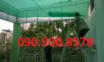 Lưới che nắng Thái Lan 80%, 2m x 100m