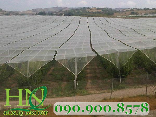 Lưới chống côn trùng làm nhà lưới