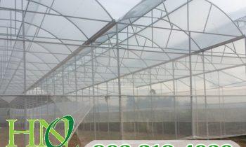 Tại sao công nghệ nhà màng kính israel lại đang dần trở thành xu hướng nông nghiệp hiện đại..