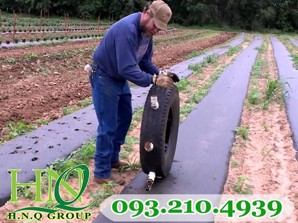 Cách dùng màng phủ nông nghiệp
