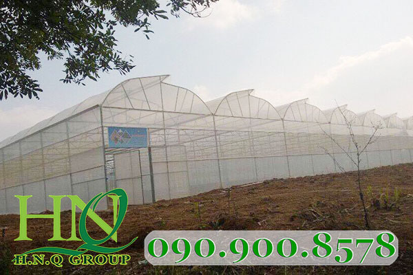 3 kiểu thiết kế mái nhà màng phổ biến ở Việt Nam