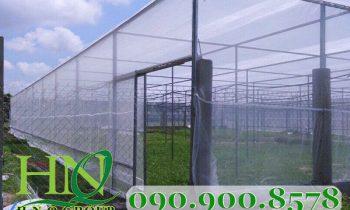 Mua lưới mùng HNQ để che phủ cho nhà kính